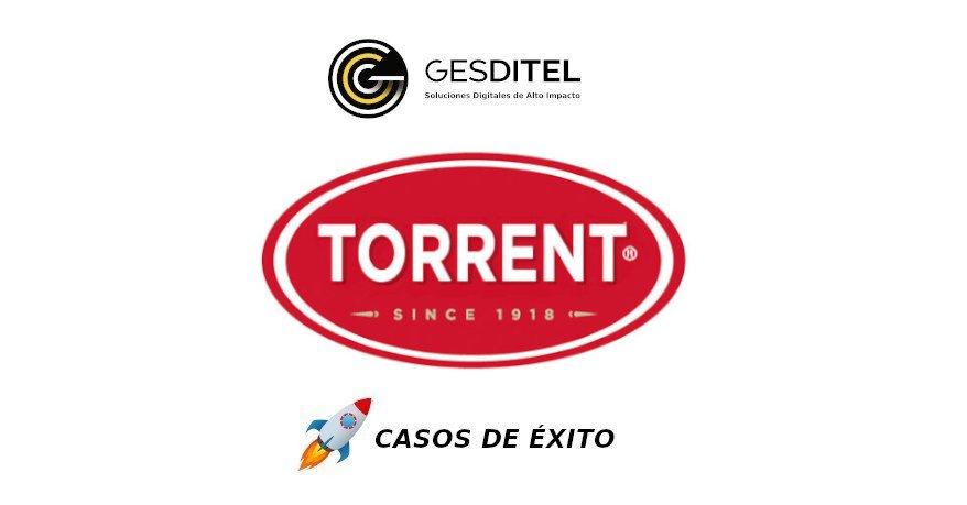 Grupo Torrent